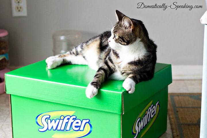 Swiffer 4