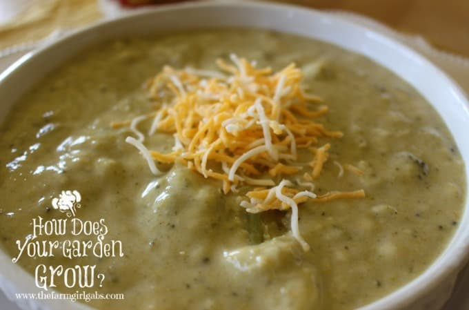 Broccoli Cheese Soup from The Farm Girl Gabs