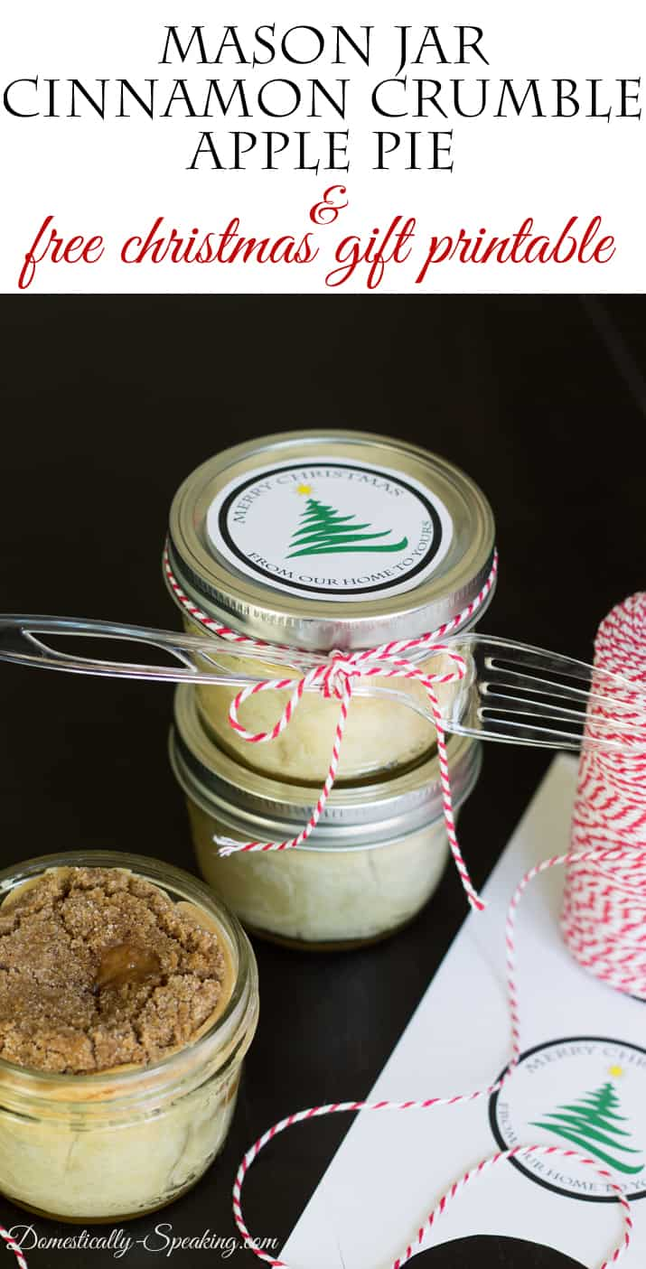 Mason Jar Cinnamon Crumble Apple Pie