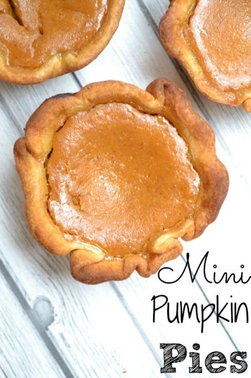 Mini-Pumpkin-Pies from Luva Bargain