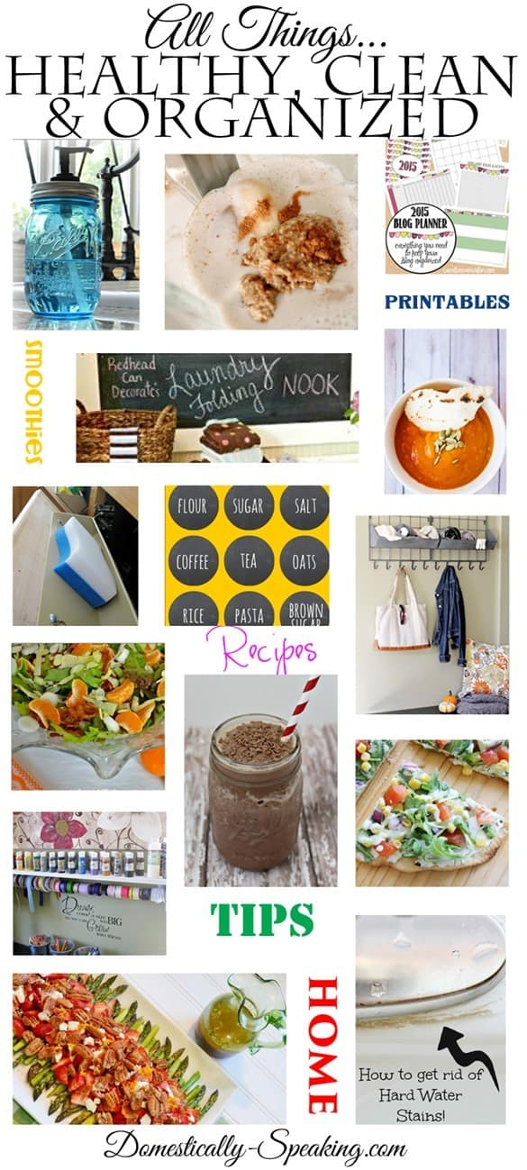 All Things Healthy Clean Organized Over 50 Items