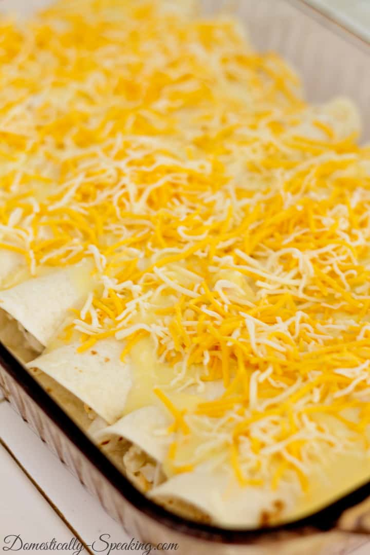 Creamy White Chicken Enchiladas 1