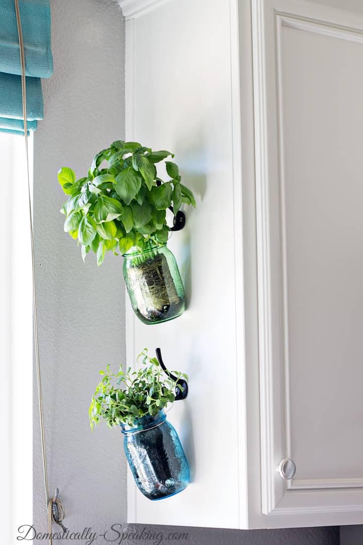Hanging Herb Mason Jars 6
