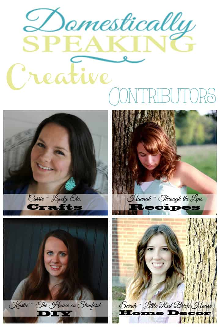 Creative Contributors at Domestically Speaking