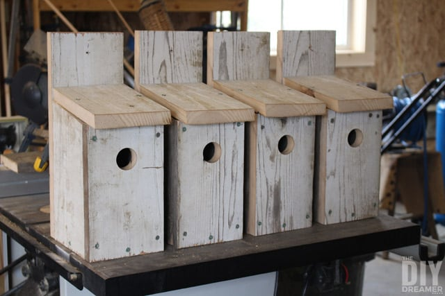 DIY-Bluebird-birhouses from The DIY Dreamer