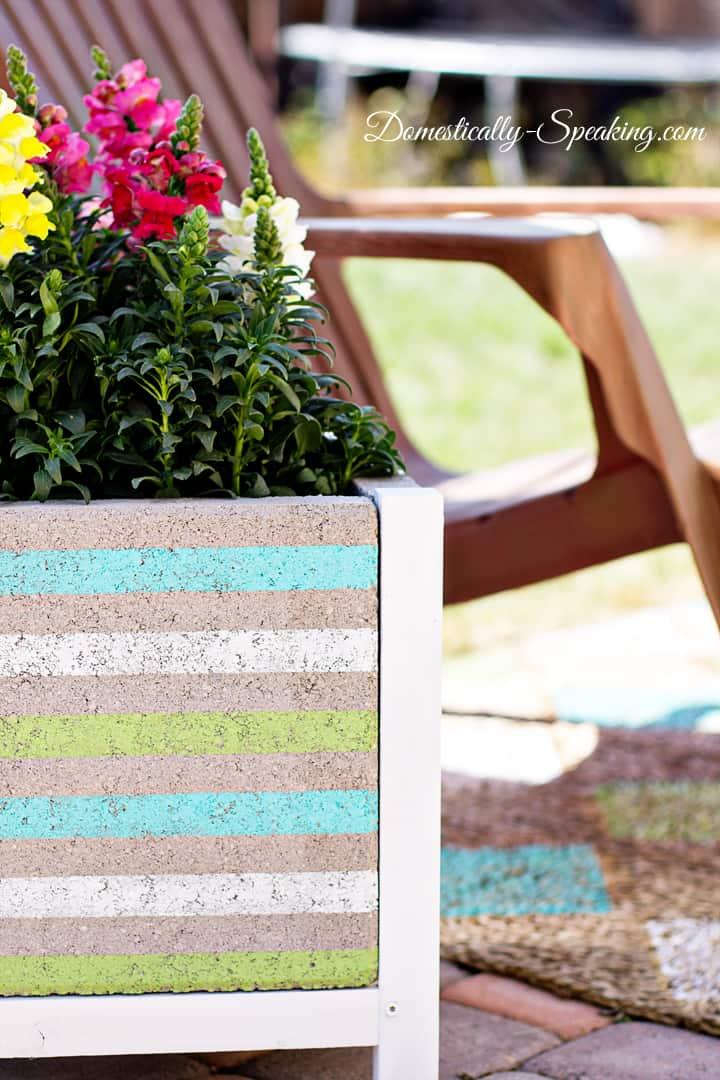 DIY Paver Planter with a Beachy Stripe
