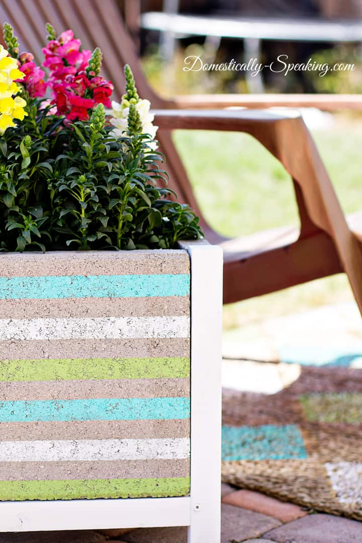 DIY Paver Planter with a Beachy Stripe 13