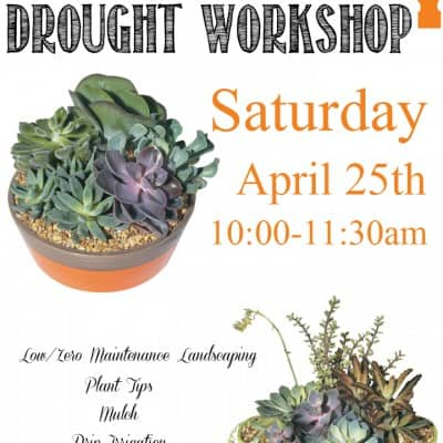 Drought DIY Workshop