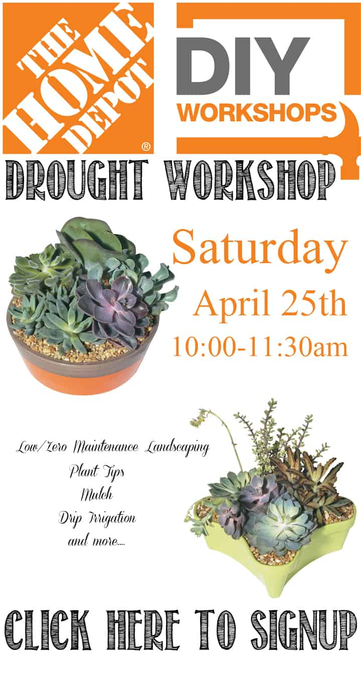 Home Depot Drought Workshop April 25th Sign Up