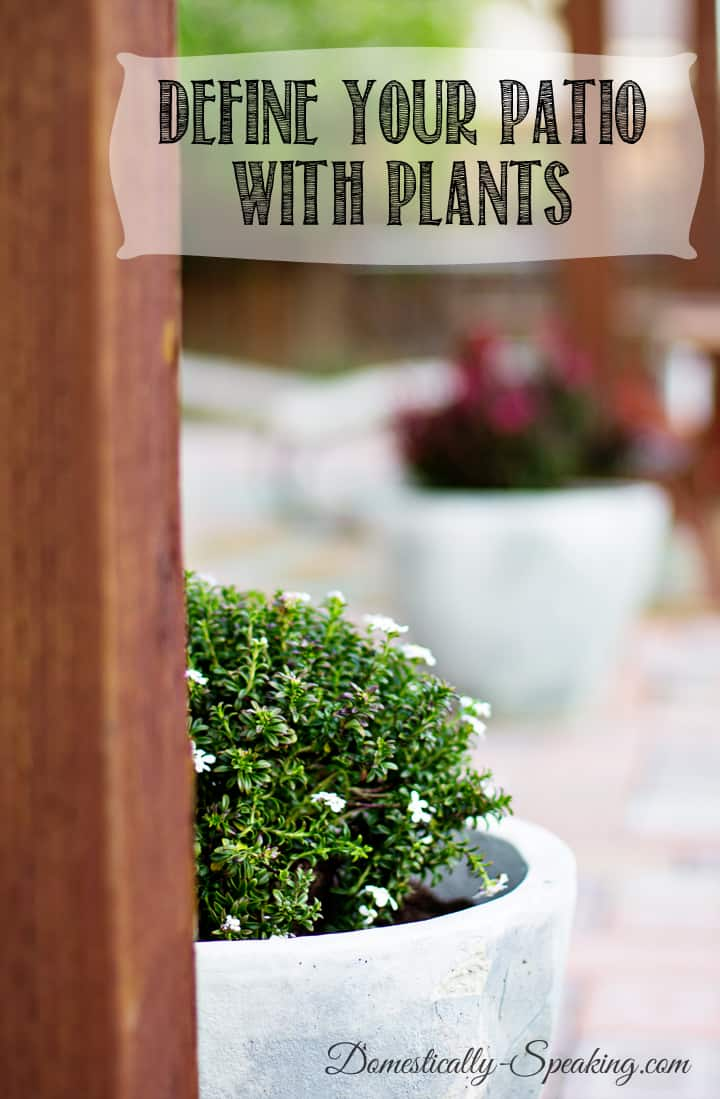 Define Your Patio with Plants