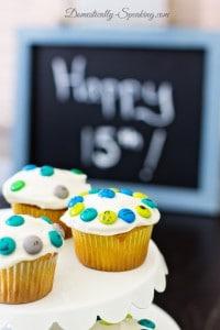 Teen Boy Birthday Party 7