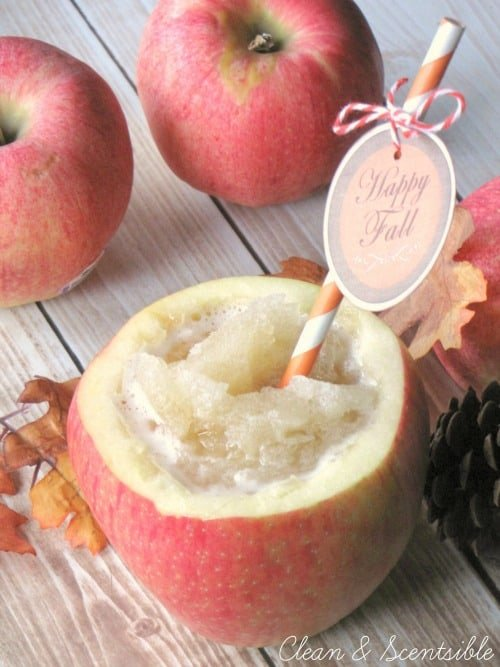 Apple-Cider-Slushie from Clean and Scentsible