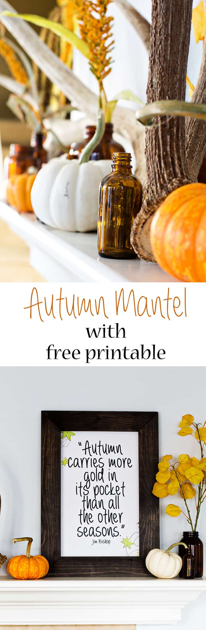 Rustic Autumn Mantel with antlers, brown bottles and a cute free printable