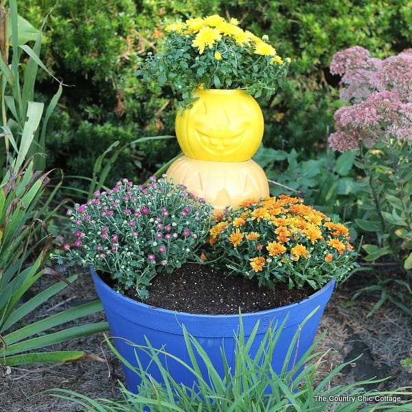 make-a-pumpkin-planter-for-your-fall-garden-from The Country Chic Cottage
