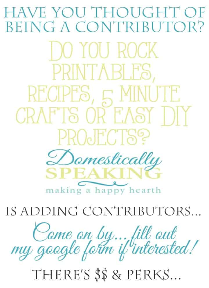 Contributor Call for Domestically Speaking 2015