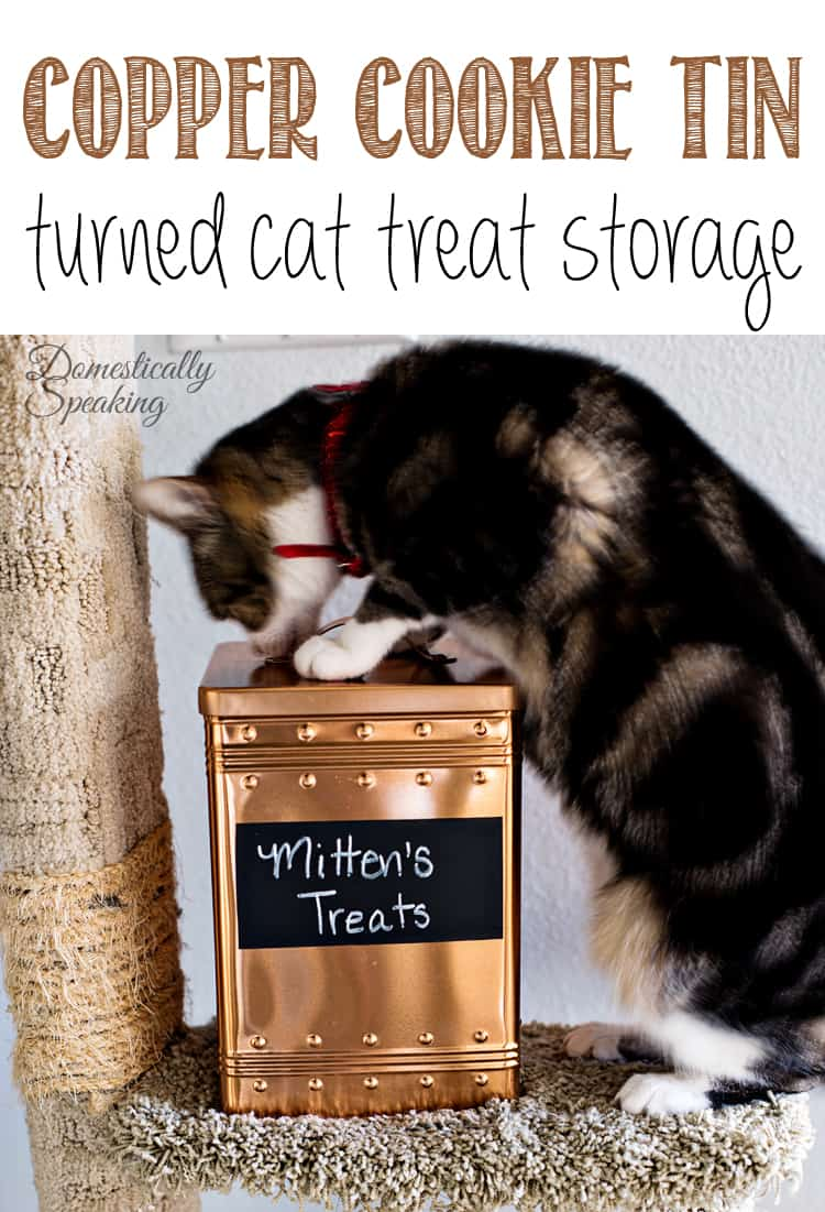 Copper Cookie Tin turned Pet Treat Storage