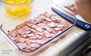 Bite Sized Slices of Turkey Bacon for the bottom of the High Protein Casserole