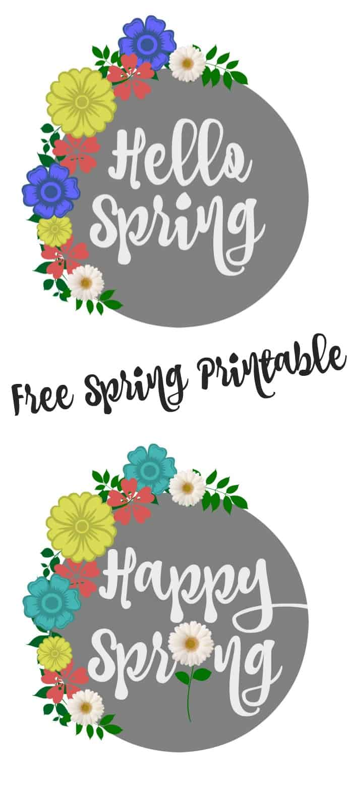 Free Spring Printables in a gorgeous gray with spring flowers - Hello Spring and Happy Spring