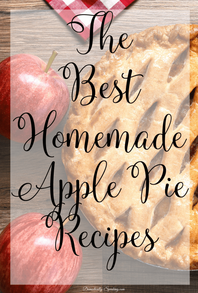 The Best Homemade Apple Pie Recipes lots of varieties that you'll LOVE Perfect for Memorial Day, 4th of July and of course Fall