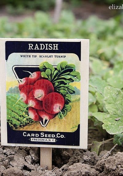 Vintage Seed Packet Plant Markers