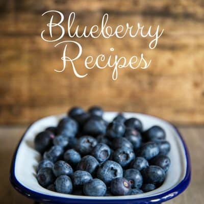 Blueberry Recipes – Blueberry Muffins and much more!
