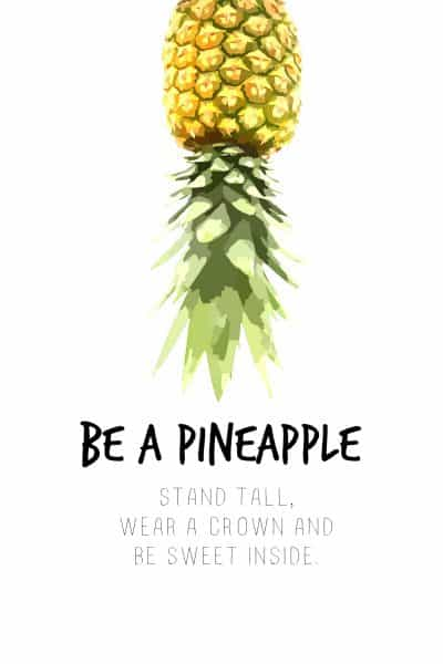 Do It…Be A Pineapple
