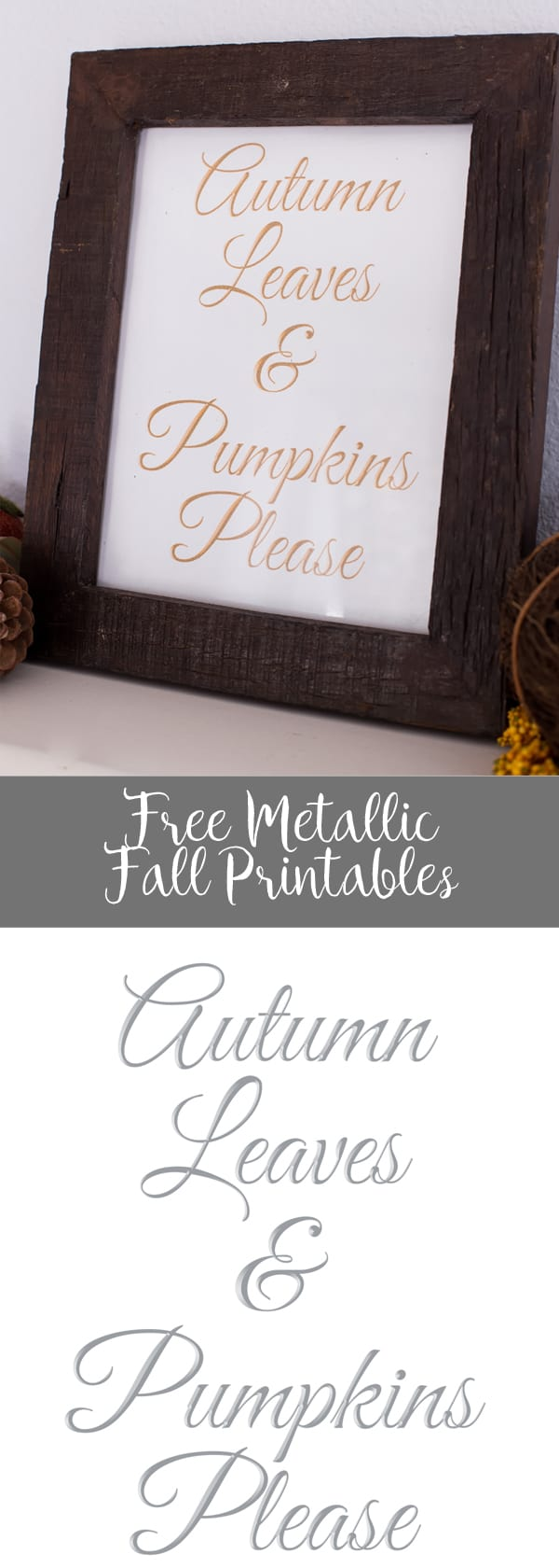 Free Metallic Fall Printables - Autumn Leaves and Pumpkins Please in Silver, Bronze & Gold!