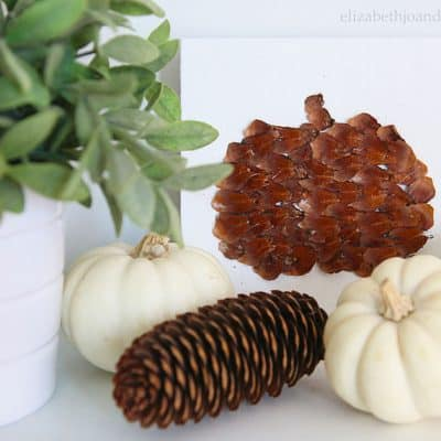 Pinecone Scale Pumpkins