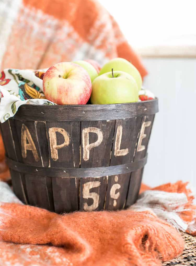 Thrift Store Stained Apple Bucket