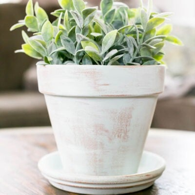 DIY Aged Terracotta Pot