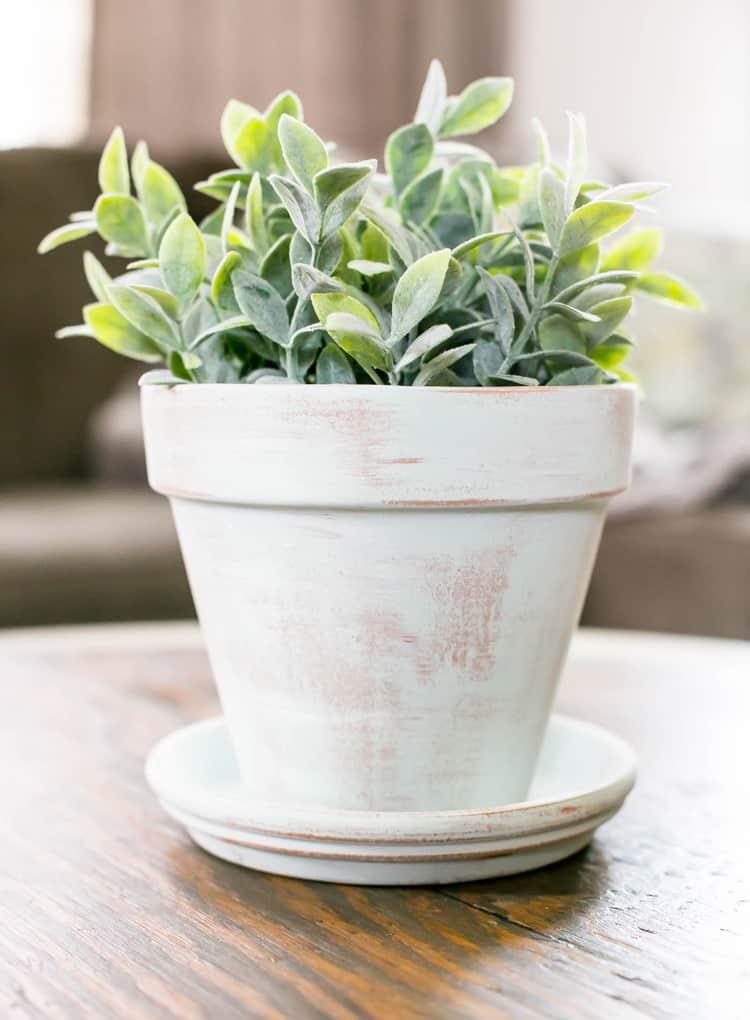 DIY Aged Terracotta Pot
