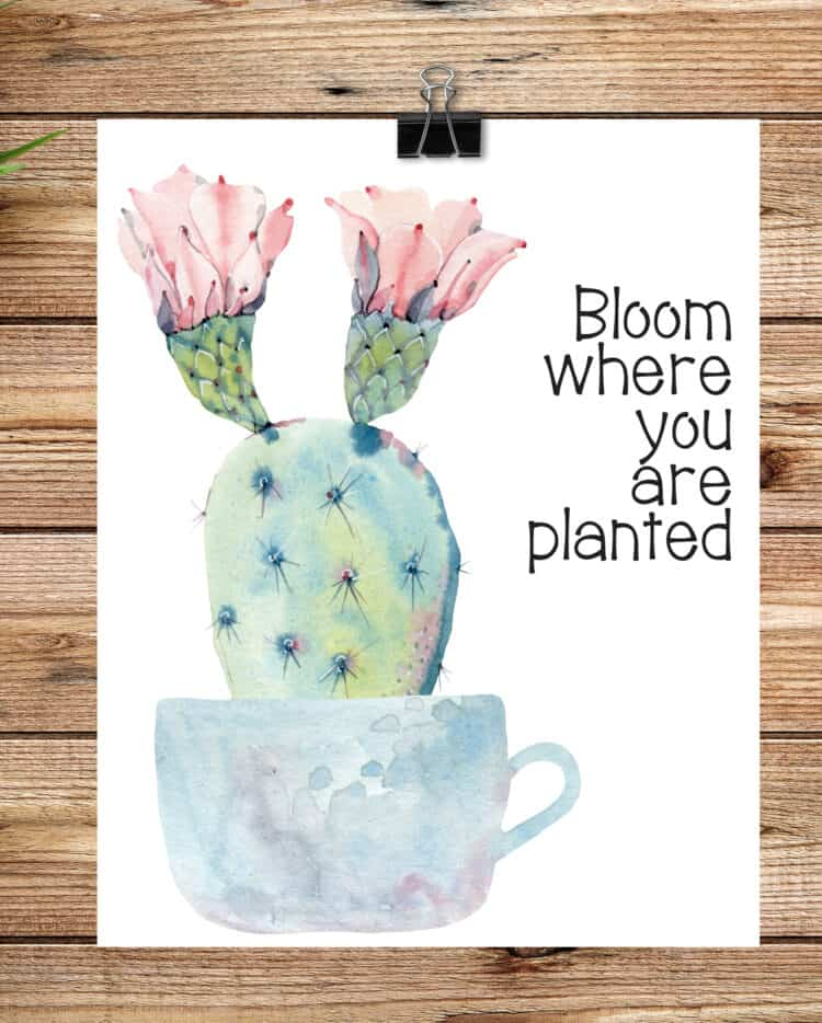 Bloom Where You Are Planted free printable for Spring