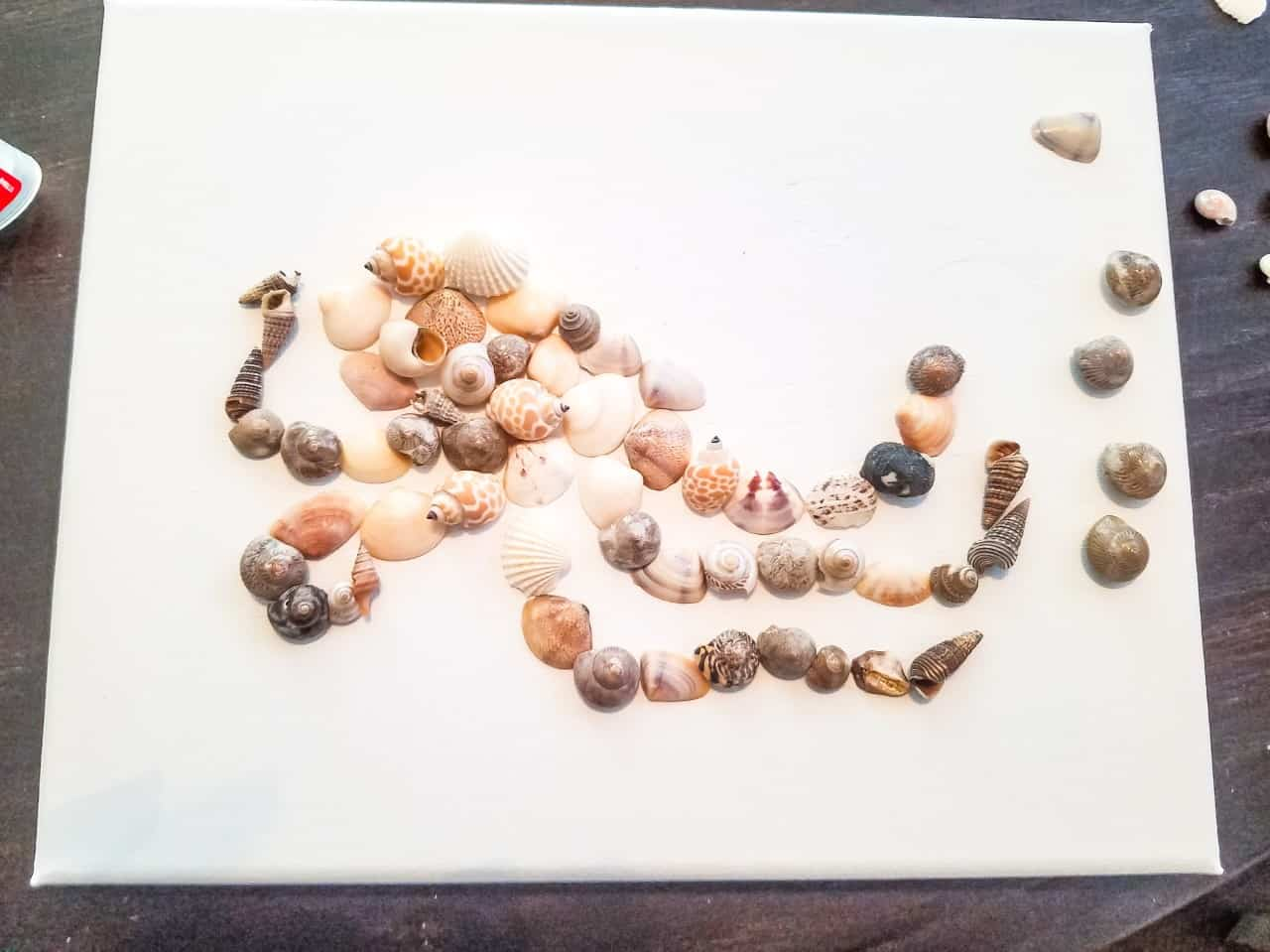 Gluing shells onto canvas.