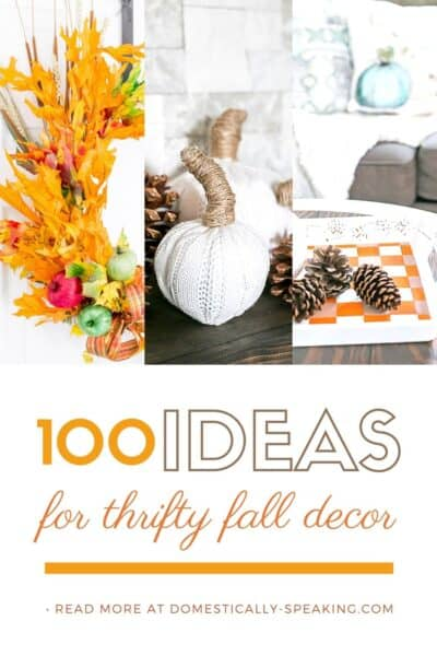 100+ Thrifty Fall Decor Ideas