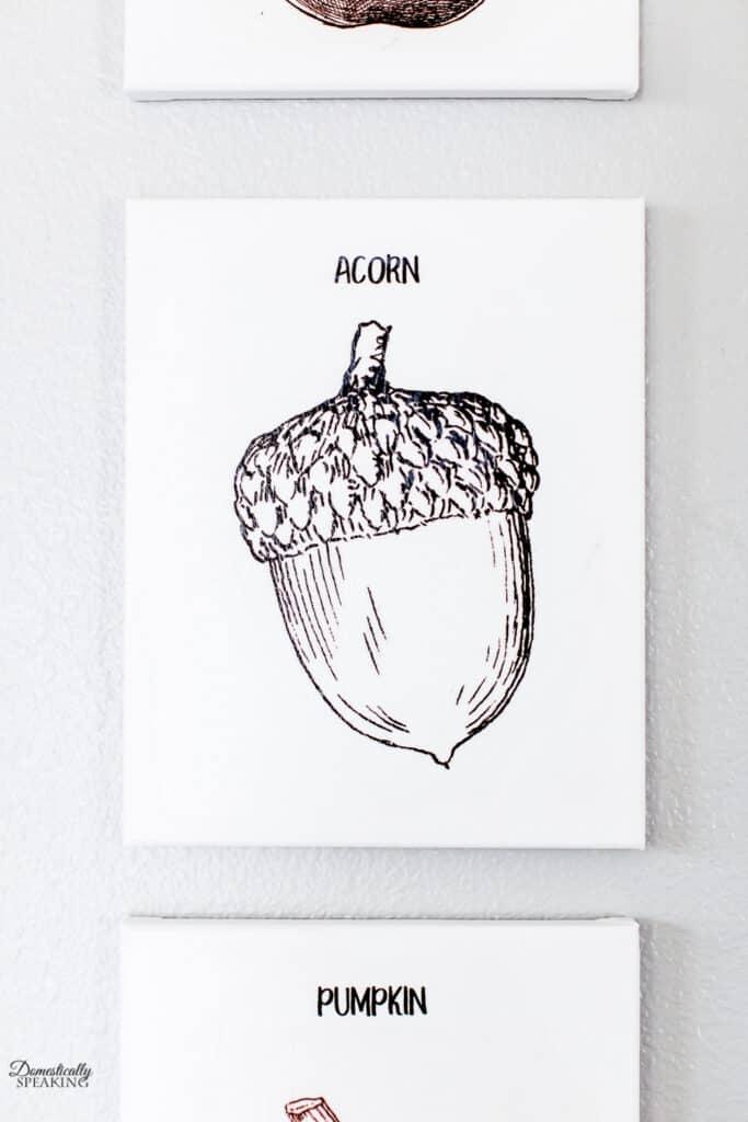 Acorn Tissue Paper Art