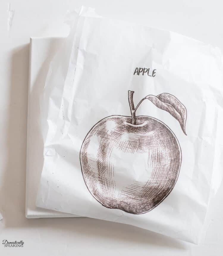 Apple Printed on Tissue Paper
