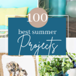 Best Summer Projects